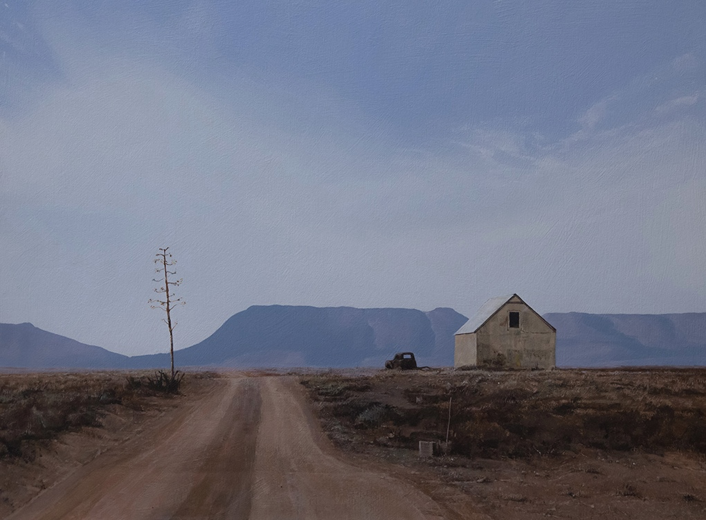 South African artist Peter Bonney image title Steynsberg Sisal